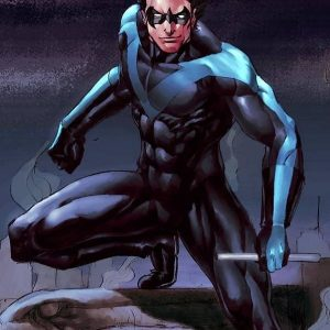 Danny Shepherd Nightwing The Series Jacket
